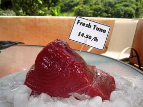Boquete supermarket with tuna shown – Best Places In The World To Retire – International Living
