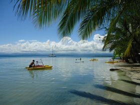 Bocas del Toro, Panama, retire, gringo, expat, Starfish Beach, Caribbean, lifestyle – Best Places In The World To Retire – International Living
