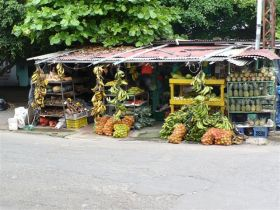 David, Panama fruit stand – Best Places In The World To Retire – International Living