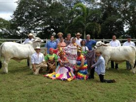 Wee-Yiong Fung cattle farm in Chiriqui, Panama – Best Places In The World To Retire – International Living
